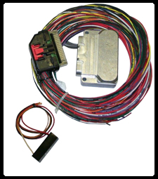 MICRO HARNESS CONTROLLER WITH CENTER BRAKE LIGHT